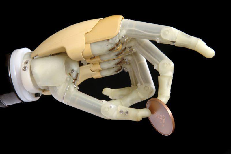 Początki prawdziwej żywej protezy?